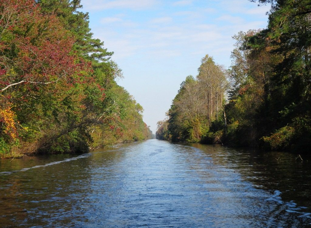 dismal-swamp-canal(1)