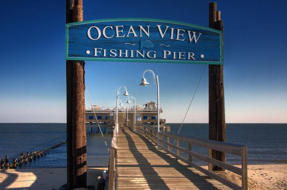Ocean View - Elise Chard